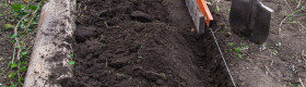 Test the soil when preparing planting beds in Spring and Fall