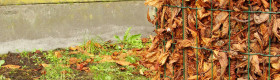 Leaves in wire cylinder will decompose into leaf mold--a soil conditioner and mulch.